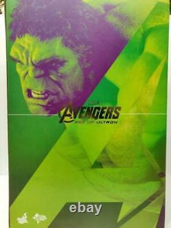 Hot Toys 1/6 Avengers Age of Ultron Hulk Deluxe Collectible Set MMS 287