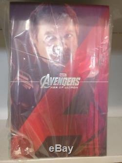 Hot Toys Avengers Age of Ultron Hawkeye Collectible Figurine