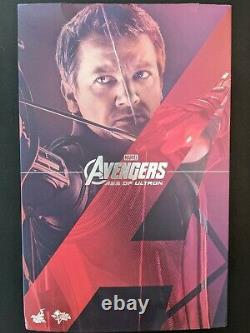 Hot Toys HAWKEYE Avengers Age of Ultron 1/6 Movie Masterpiece Figure MMS289