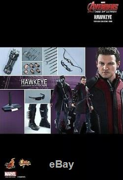 Hot Toys Hawkeye Avengers Age of Ultron MMS289 Jeremy Renner New