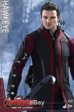 Hot Toys Hawkeye Avengers Age of Ultron MMS289 Jeremy Renner NewithSealed Shipper